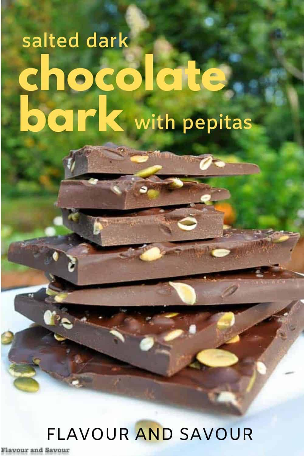 Salted Dark Chocolate Bark with pepitas with text