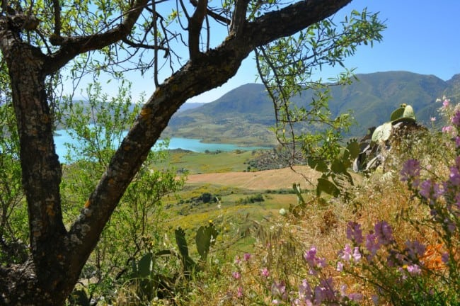 The Hill Towns of Andalusia