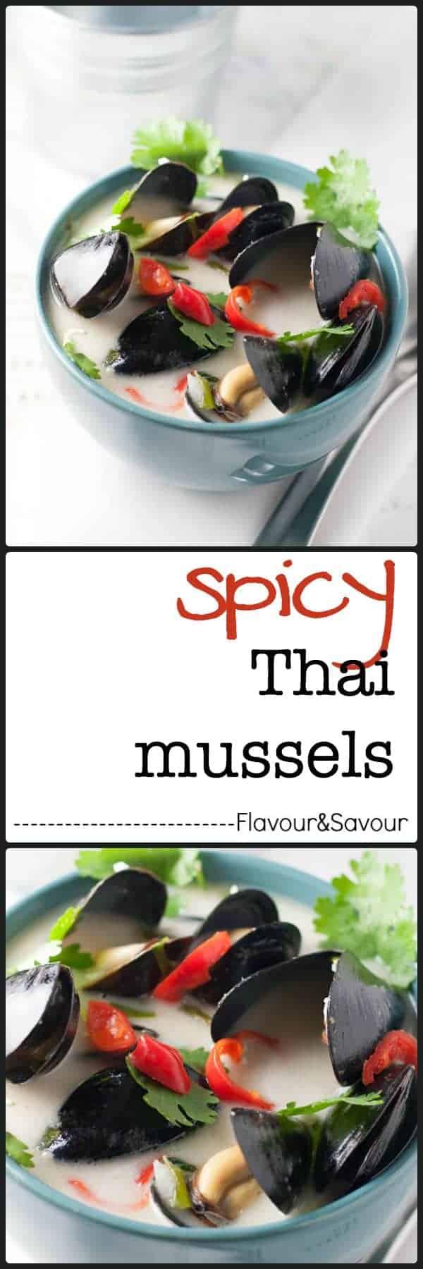 Spicy Thai Steamed Mussels in Coconut Milk |www.flavourandsavour.com