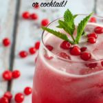 Wild Huckleberry Mint Mohito Mocktail pin