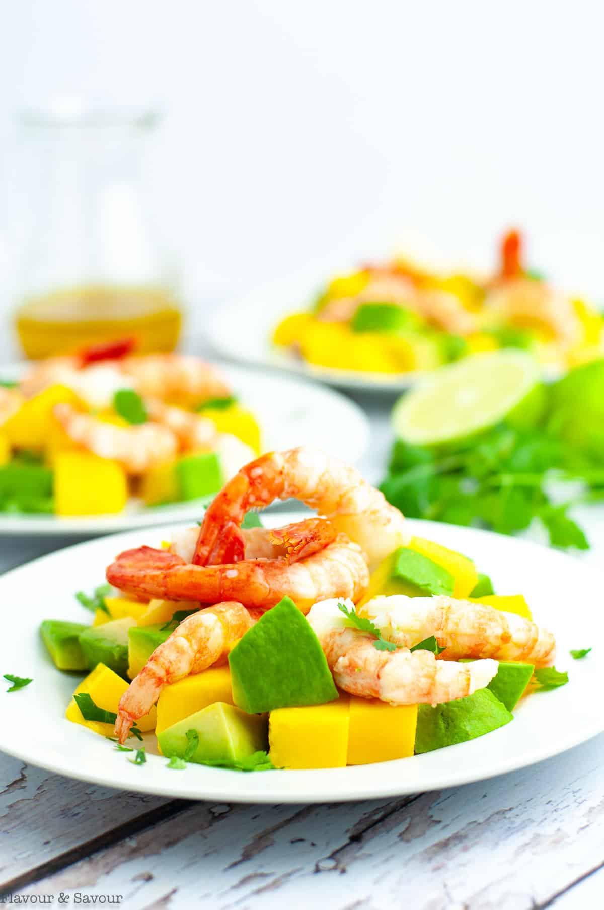 Three plates of Prawn Mango Avocado Salad