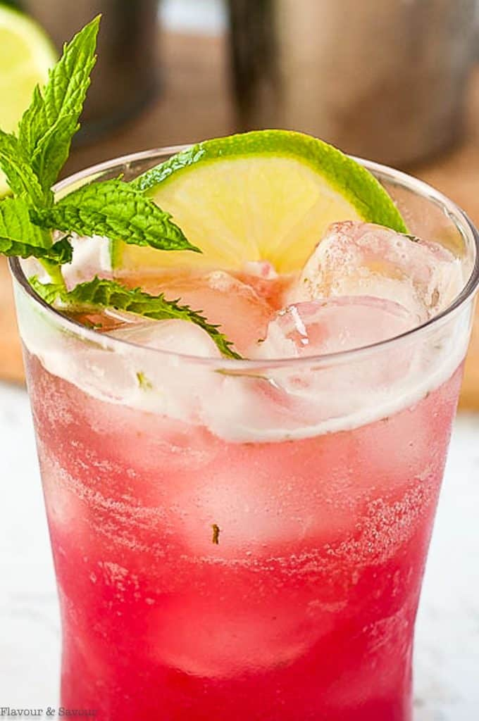 close up view of a glass of Rhubarb Mint Mojito