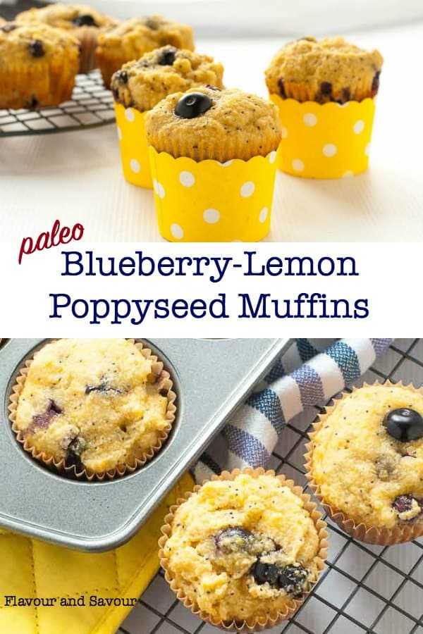 Blueberry Lemon Poppy Seed Muffins title