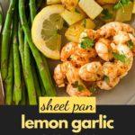 Pinterest Pin for Sheet Pan Lemon Garlic Prawans