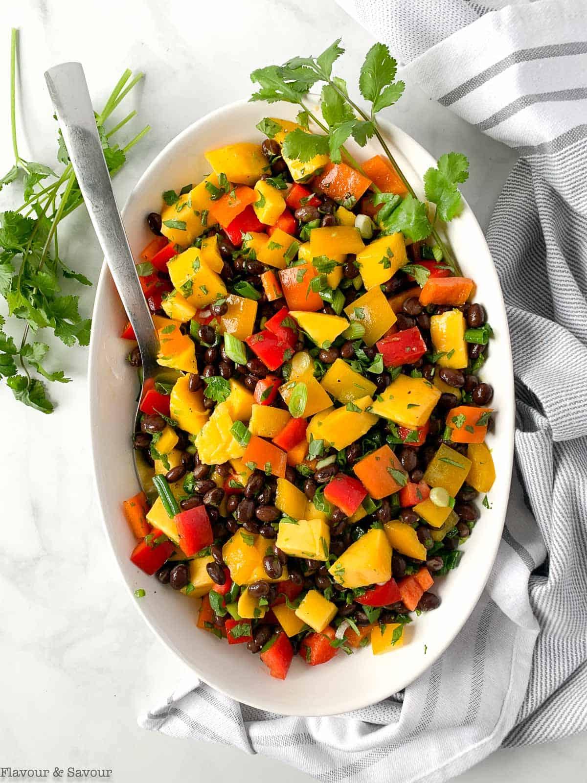 Overhead view of Mango Black Bean Salad