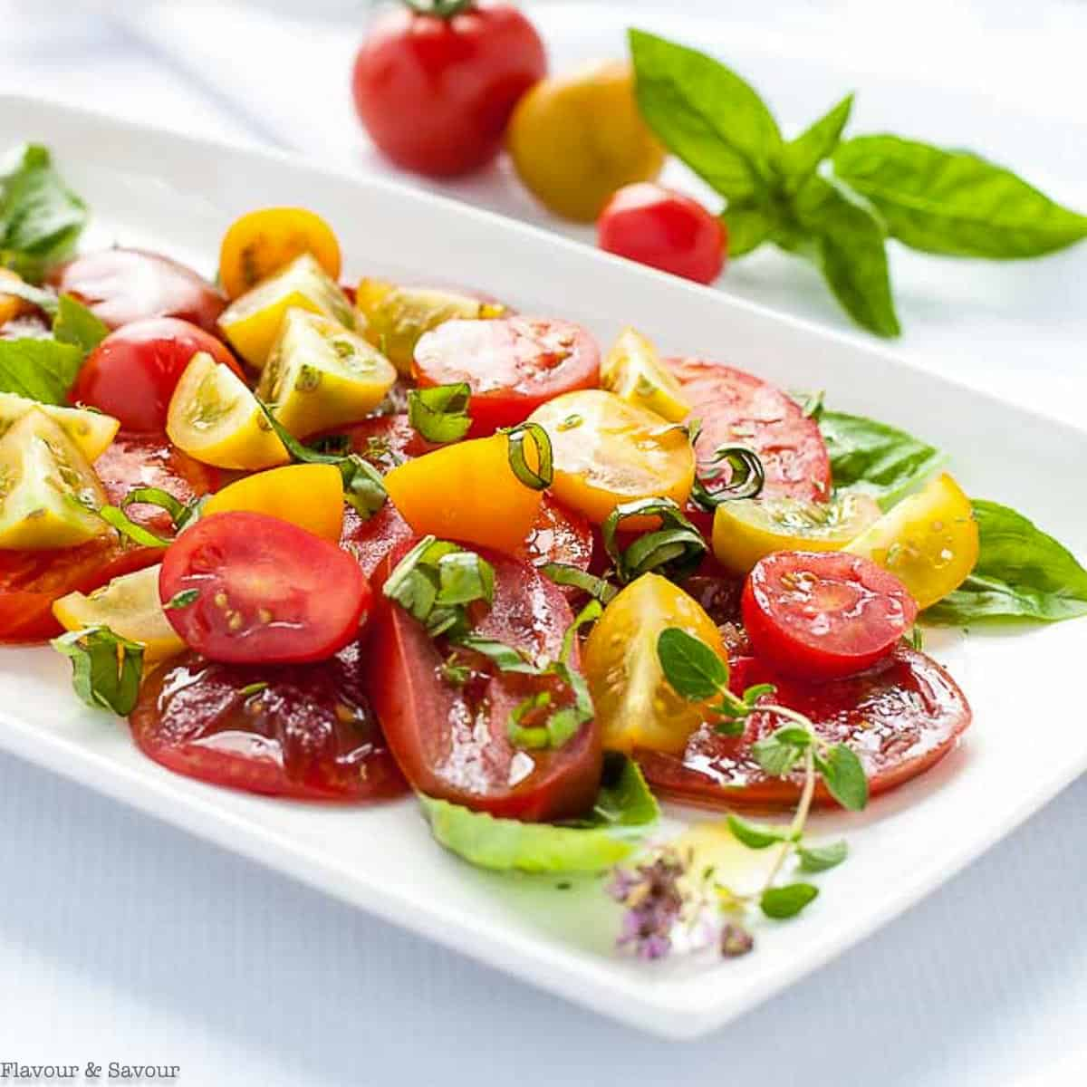 Heirloom tomato salad with fresh herbs on a white platter.